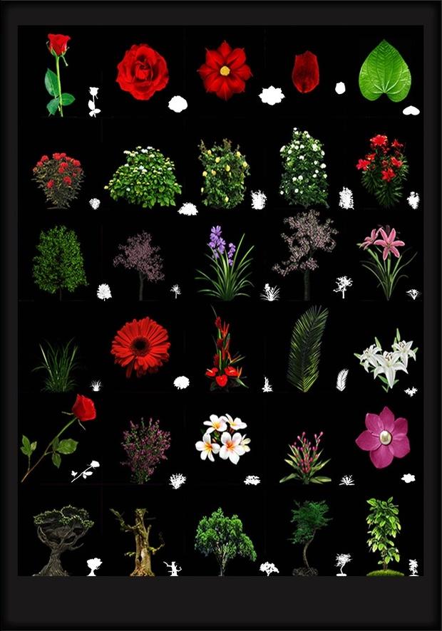 FLOWERS 2016