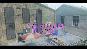 Syn Zeegum 2CE (W/Clips & Cines!)