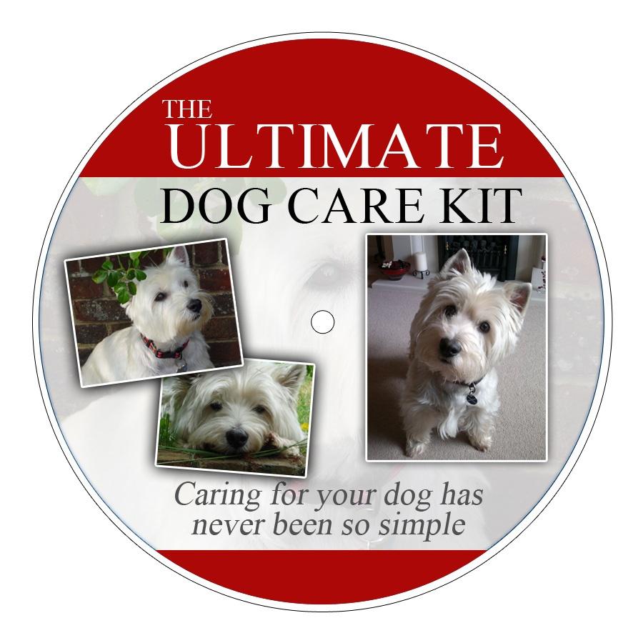 Ultimate Dog Training Dvd