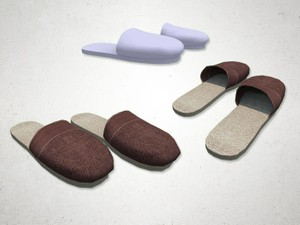 Slippers - 3D Model