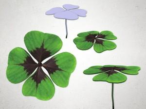 Leaf Clover - 3D Model