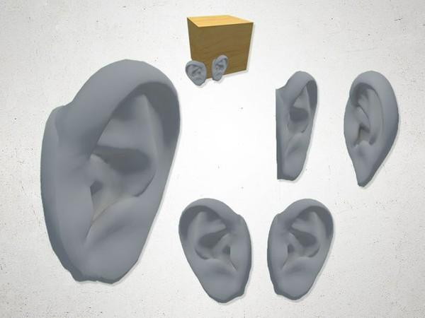 Ear - 3D Model