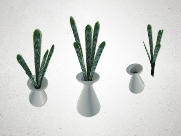 Plant - 3D Model