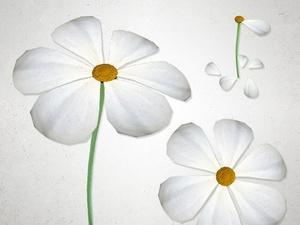 Flower - 3D Model