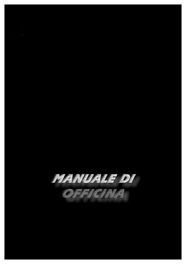 Benelli Motorcycle Manuals for Mechanics