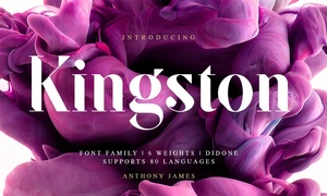 SF Kingston | Font Family