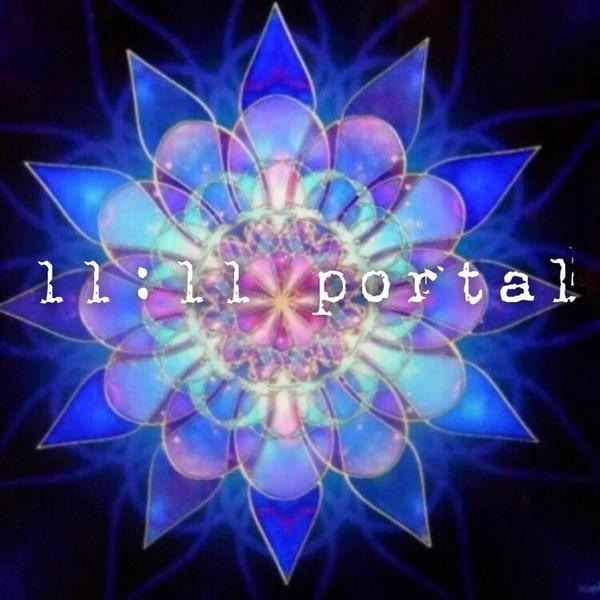 11.11 master portal