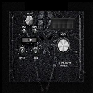Black Spider (32BIT - 64BIT VSTI)