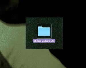 PHONK VOCALS PACK VOL  2 / PHONK SAMPLE PACK VOL  2 - D MONEYBAGS