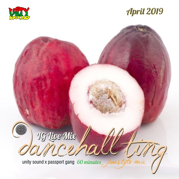 [Single-Tracked Download] Unity Sound - Dancehall Ting v7 - IG Live Mix - April 2019