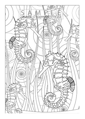 Sea horse colouring-in page