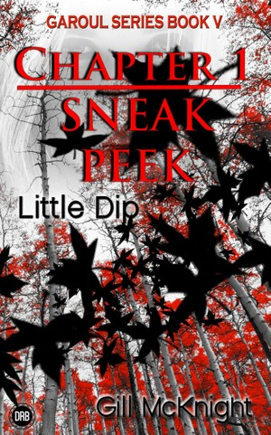 Little Dip by Gill McKnight - Chapter 1 sneak peek (mobi)
