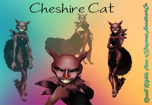 Cheshire Cat Resell Rights 0/3 People Limited