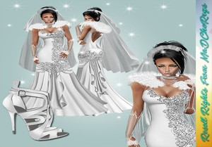 Silver Wedding Bundle Catty Only!!!!