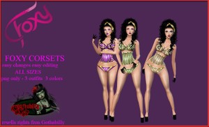 Foxy Corsets / Png and Chkn files Catty Only!!!