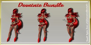 Dominie BDSM Bundle Catty Only!!!