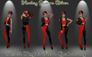 Harley Quinns Biker Catty Only!!!