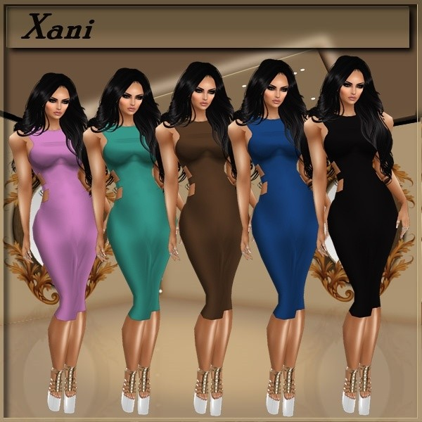 Xani Dresses NO RESELL