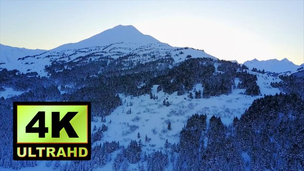 01716_aerial drone footage of snowed mountains and pine forest in Alaska_4K UltraHD Version