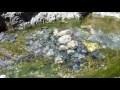 00316_GoPro Hero 4 footage 60fps clean streaming water seamless loop