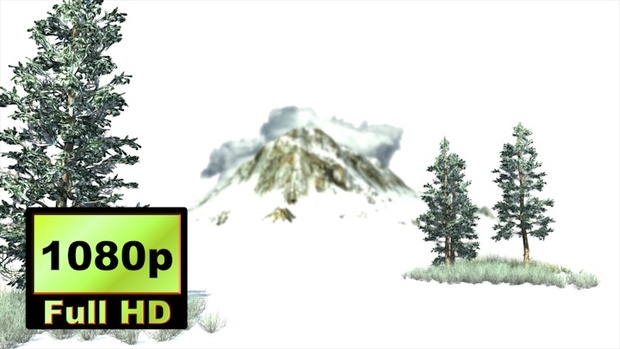 00022_Blue spruce tree and grass in the winter 3D animation