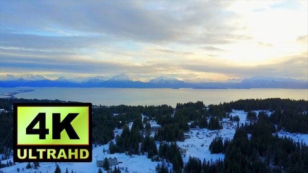 01589_aerial drone footage of a beautiful snowed pine forest in Alaska_4K UltraHD Version