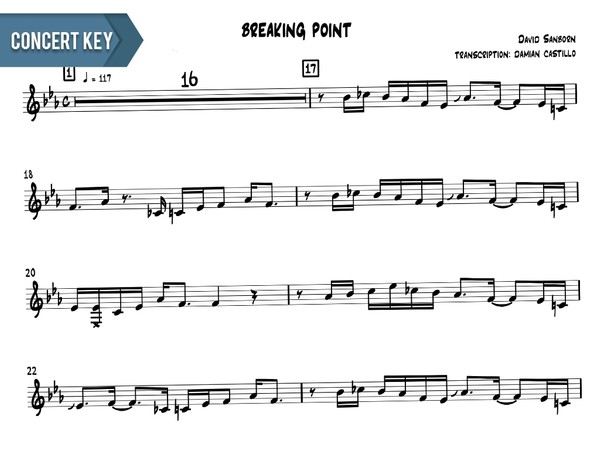 "David Sanborn - ""Breaking Point"" - Concert Key"