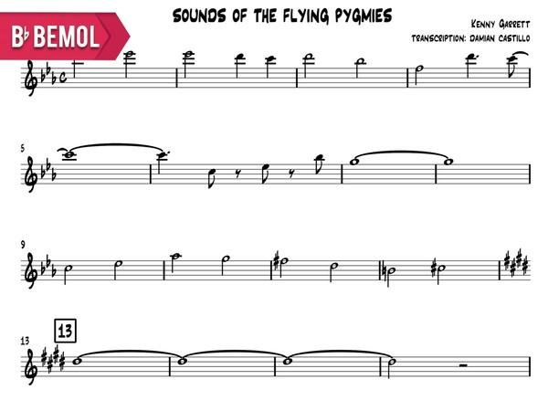 "Kenny Garrett - ""Sounds Of The Flying Pygmies"" - Bb"