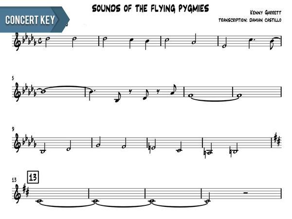 "Kenny Garrett - ""Sounds Of The Flying Pygmies"" - Concert Key"