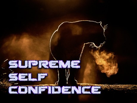 Supreme Self Confidence Mind Movie