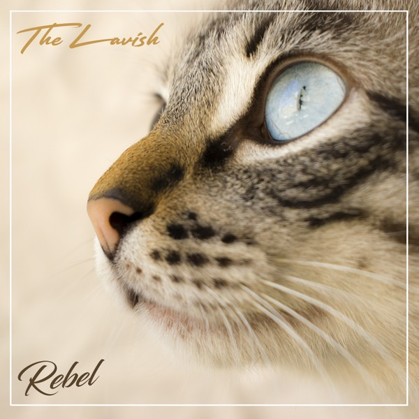 TheLavish - Rebel (Full Product)