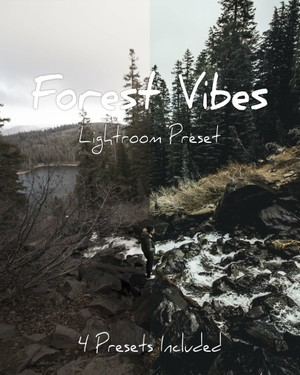 Forest Vibes Lightroom Preset Pack! - @ruusstty