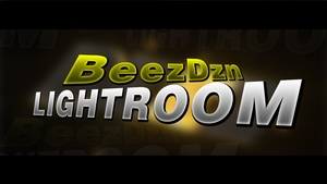 BeezDzn 2017 Lights Only 4€, 6€ WITH MY PVT MATERIAL PACK AND AMAZING CC, check desc :D !