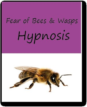 Fear of Bees & Wasps Hypnosis Download