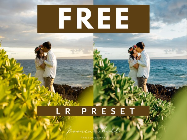 Free Mobile + Desktop Lightroom  Preset