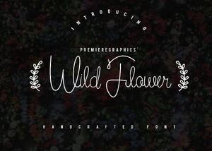 Wild Flower Script