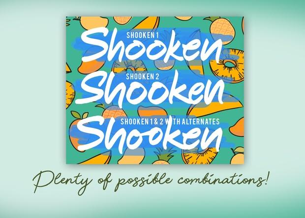 Shooken Fonts + Extras & Swashes