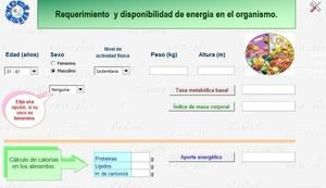 Calcular el requerimiento y disponibilidad de energía del organismo.