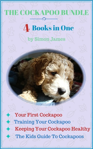 The Cockapoo Bundle