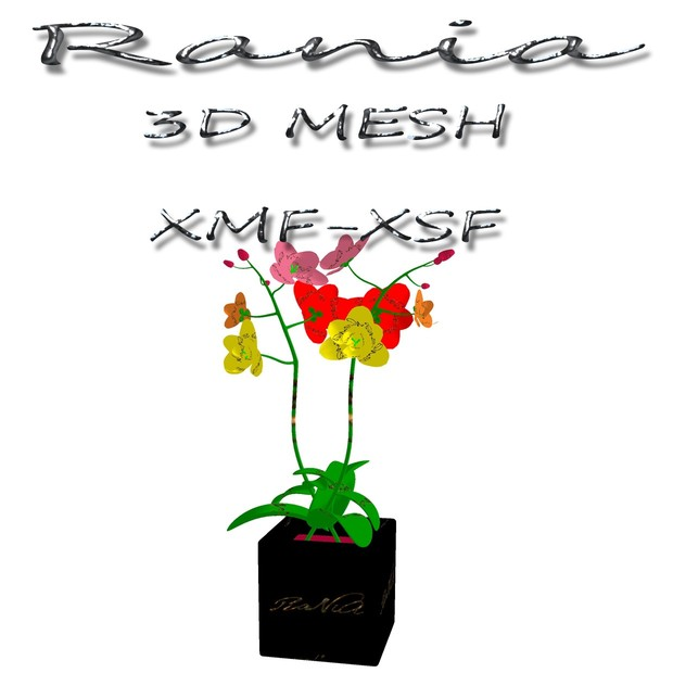 RaNiA-Furniture MeSH-14
