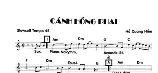 Band Sheet -  Canh Hong Phai  - Ho Quang Hieu - Key: Am