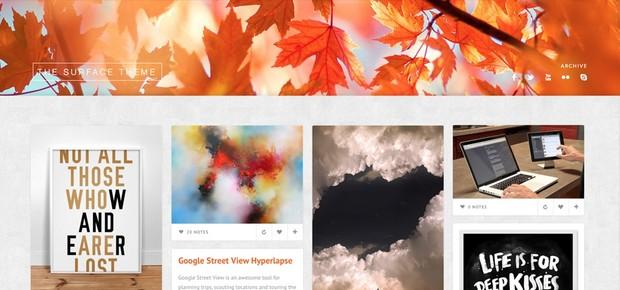 Surface - Flexible grid based tumblr theme created for creatives.