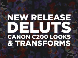 DELUTS C200 Looks and Transforms