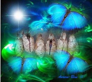 Starseed Chrysalis, Frequency Activator Template