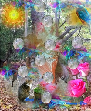 Frequency Activator Template - 12 Sphere Crystal, Tree of Life