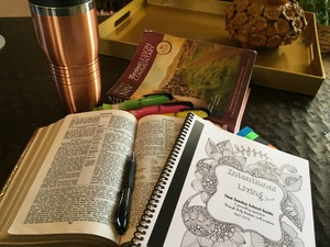 Intentional Living Journal Sampler - April 10, 2016 A Reversal of Shame