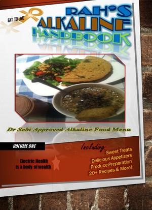Rahs Alkaline Handbook Ebook