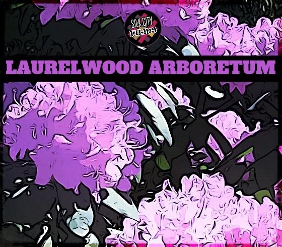 Laurelwood Arboretum - Wayne NJs Best Kept Secret - Silk City Films Destination Documentary