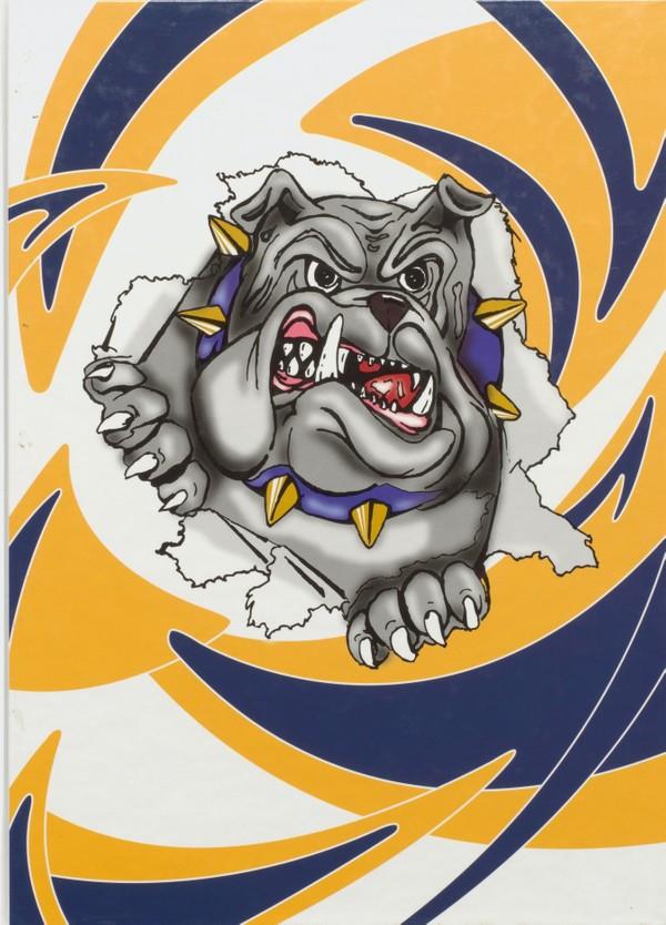 2011 Butler, N.J. High School Yearbook - Digital Downloa1