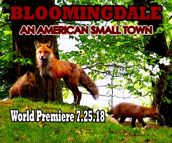Bloomingdale An American Small Town - Silk City Films 2018